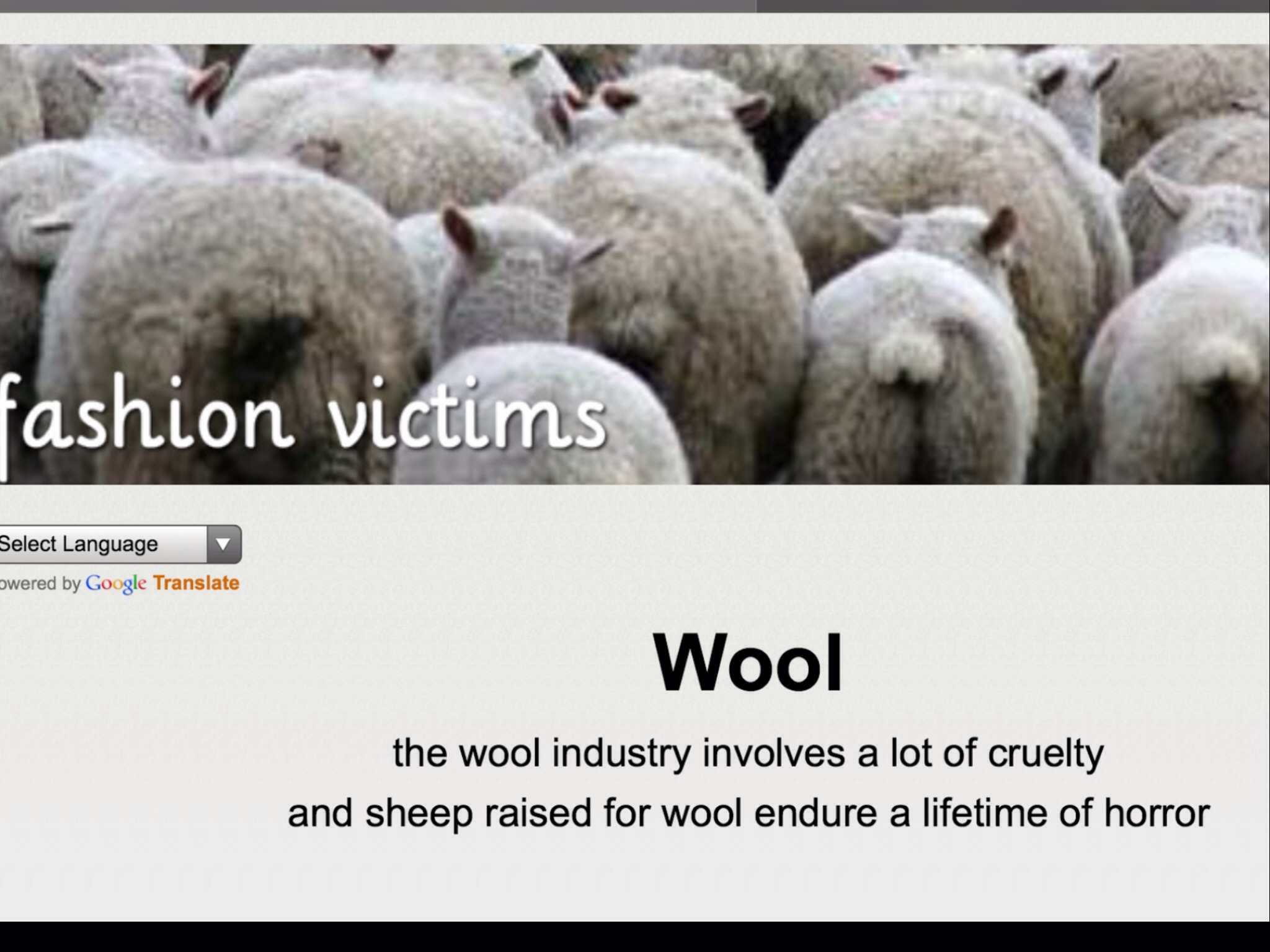 pulling the wool essay Free essay on the most successful early roman emperors available totally free at echeatcom, the largest free essay community new to pulling the wool over.