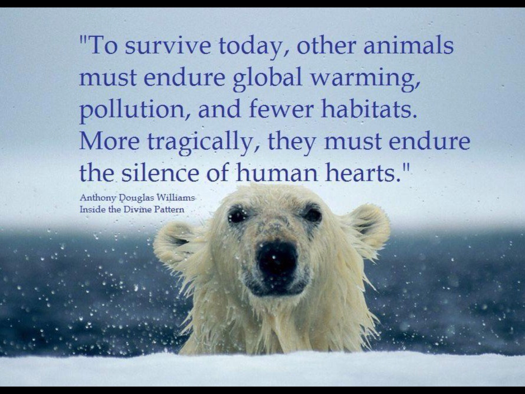 Global Warming Quotes Amusing Climate Changeraising Awarenessartisans Together.sterling